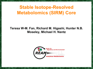 Stable Isotopes-Resolved Metabolomics (SIRM) Core