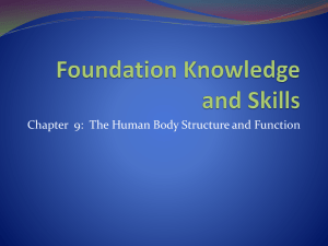 Foundation Knowledge and Skills