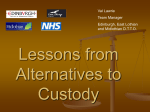 Lessons from Alternatives to Custody
