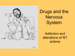 Drugs and the Nervous System