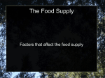 Factors_Affecting_Food_Supply