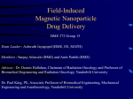 Field induced Magnetic Nanoparticle Drug Delivery