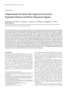 Amphetamine Paradoxically Augments Exocytotic Dopamine Release and Phasic Dopamine Signals