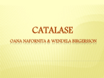 catalase ppt - WordPress.com
