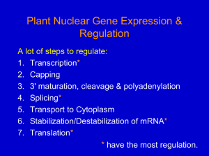 Nuclear gene expression 1
