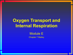 Module E Oxygen Transport and Internal - Macomb
