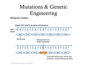 Mutations & Genetic Engineering