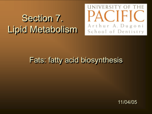 Fatty Acids :biosynthesis