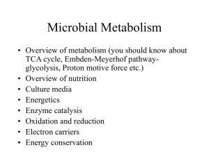 Microbial Metabolism