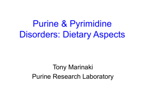 Purine & Pyrimidine Disorders: Clinical Aspects