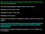 Citric acid Cycle Remake - Study in Universal Science College