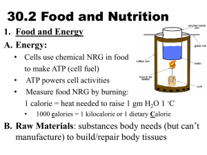 30.2 Food and Nutrition - Faribault Public Schools