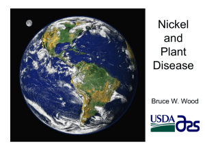 Nickel and Plant Disease - International Plant Nutrition