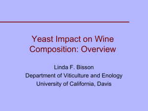 Yeast Impact on Wine Composition: Overview