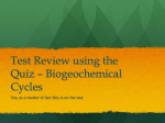 Test Review using the Quiz – Biogeochemical Cycles