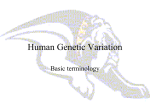 Human Genetic Variation - Mediapolis Community School