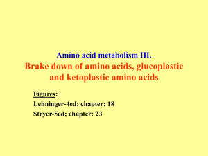Amino acid metabolism III. Brake down of amino acids