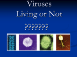 Viruses Living or Not