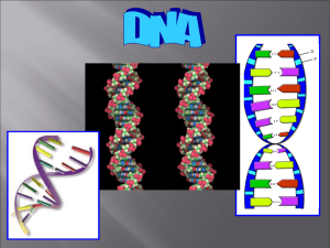 DNA - TeacherWeb
