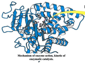 Mechanism of enzyme action, kinetic of enzymatic catalysis