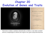 Chapter 20 - Evolution of genes and traits