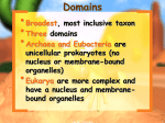 classification- domains and kingdoms