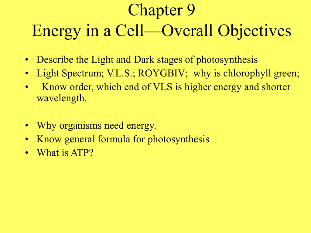 For Chap 9 Biology Photosynthesis