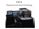 FACS flourescens activeted cell sortering