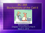 BC 367 Biochemistry of the Cell I