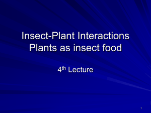 Insect-Plant Interaction - Home