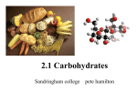 2.1 Carbohydrates - SandyBiology1-2