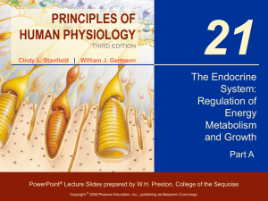 The Endocrine System: Regulation of Energy Metabolism and Growth