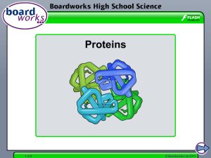 Proteins - Boardworks