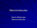 Macromolecules - WordPress.com