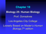 Chapter 10 - Los Angeles City College