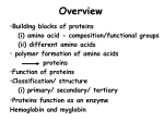 proteins USP