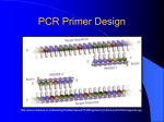 PCR Primer Design - Marinebiotech.net
