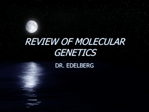 REVIEW OF MOLECULAR GENETICS - Pascack Valley Regional