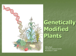 Genetically Modified Plants - Georgia Public Broadcasting