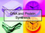 DNA and Protein Synthesis - Trinity School, Nottingham