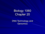 Biology 1060 Chapter 20 - College of Southern Maryland