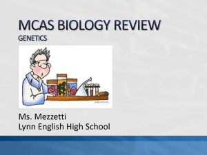 MCAS BIOLOGY REVIEW GENETICS AND EVOLUTION