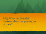 LEQ: What did Mendel discover about the patterns of inheritance?