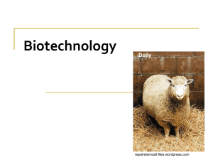 Chapter on Biotechnology