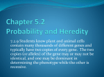 5.2 Probability and Heredity