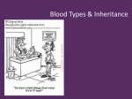 Understanding Blood Type & Blood Disorders