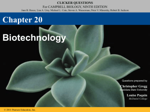 ch 20 biotech clicker questions