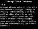 Concept Check Questions