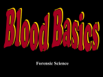 Chapter 8 - Blood Type