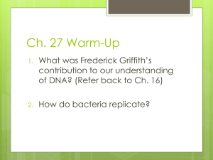 Chapter 27 Bacteria